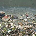 Indemnisation déchet toxique Abidjan