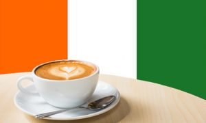 Référendum côte d'Ivoire