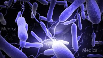 Afrique épidemie Cholera