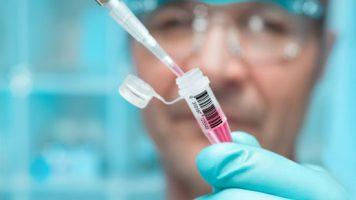 Epidémie d'Ebola en Afrique de l'ouest : le virus avait été muté pour mieux infecter les humains