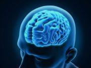 Cancer un nouveau traitement : guérison des tumeurs au niveau du cerveau
