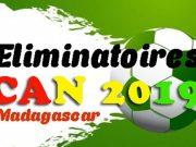 Eliminatoires CAN 2019 : le Madagascar qualifié pour les phases de groupe