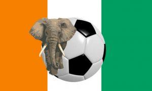 Marc Robert Wilmots devient le nouvel entraîneur des éléphants de Côte d'Ivoire