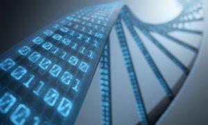 Le gène TNFR5, la solution au traitement contre le diabète de type 2 ?