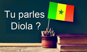 Langue Diola du Sénégal
