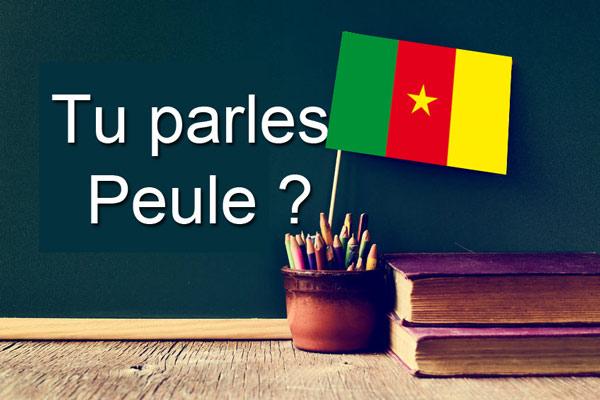 Langue Afrique Peul du Cameroun