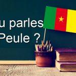 Langue Afrique le Peul Cameroun