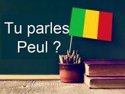 Langue peul Mali