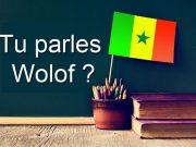 Parler la Langues Wolof