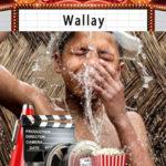 Sortie cinéma Wallay