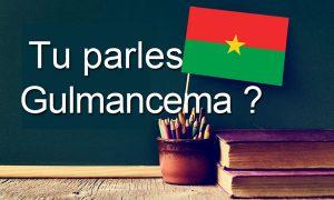 Langue Gulmancema