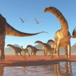 Afrique découverte dinosaures
