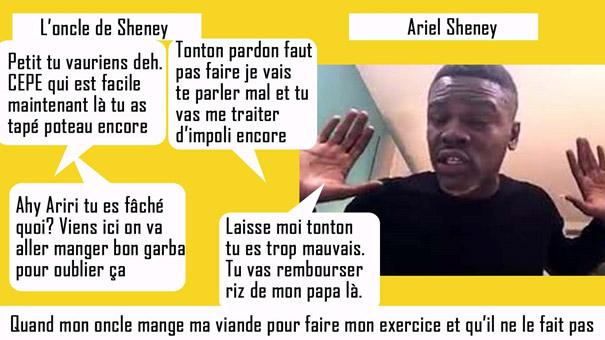 Ariel Sheney artiste coupé décalé