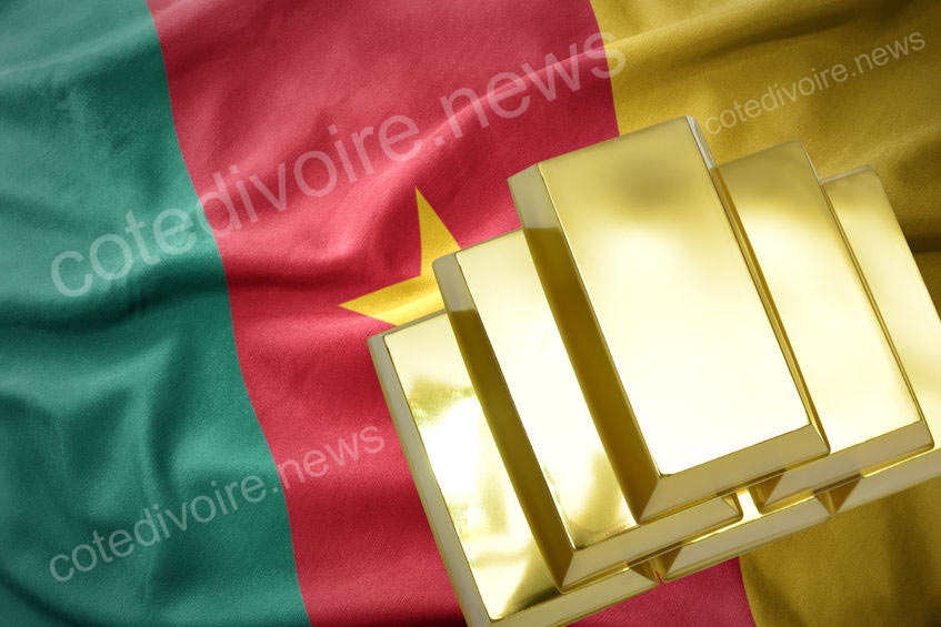 Les plus riches Camerounais