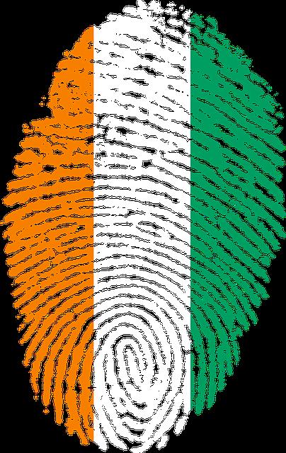 renouvellement carte identite