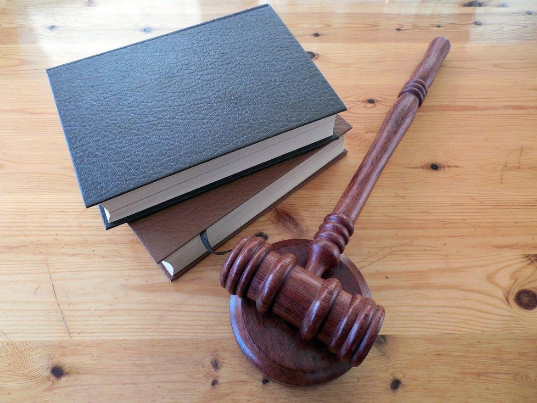 nomination-conseil-constitutionnel